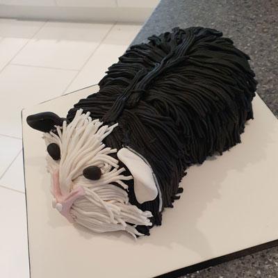 Guinea Pig birthday cake